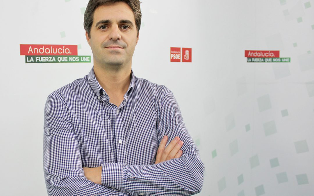 """Carmona acusa al PP-A de tomarle el pelo a la ciudadanía con su presunta defensa de la Educación Pública: """"Quieren ser el zorro al cuidado de las gallinas»"""