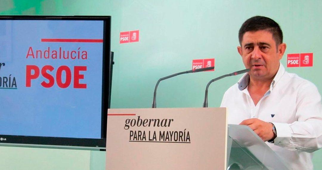 """Reyes lamenta que la """"irresponsabilidad"""" del PP y Podemos haya abocado a unas nuevas elecciones generales"""