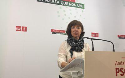 """El PSOE destaca que la Ley Andaluza de Emprendimiento va a suponer """"un ariete fundamental para relanzar la actividad"""""""