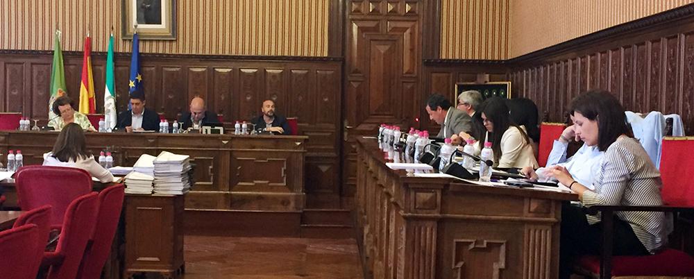 El PSOE recrimina al PP su rechazo en Diputación al olivar en pendiente y a las mujeres del mundo rural