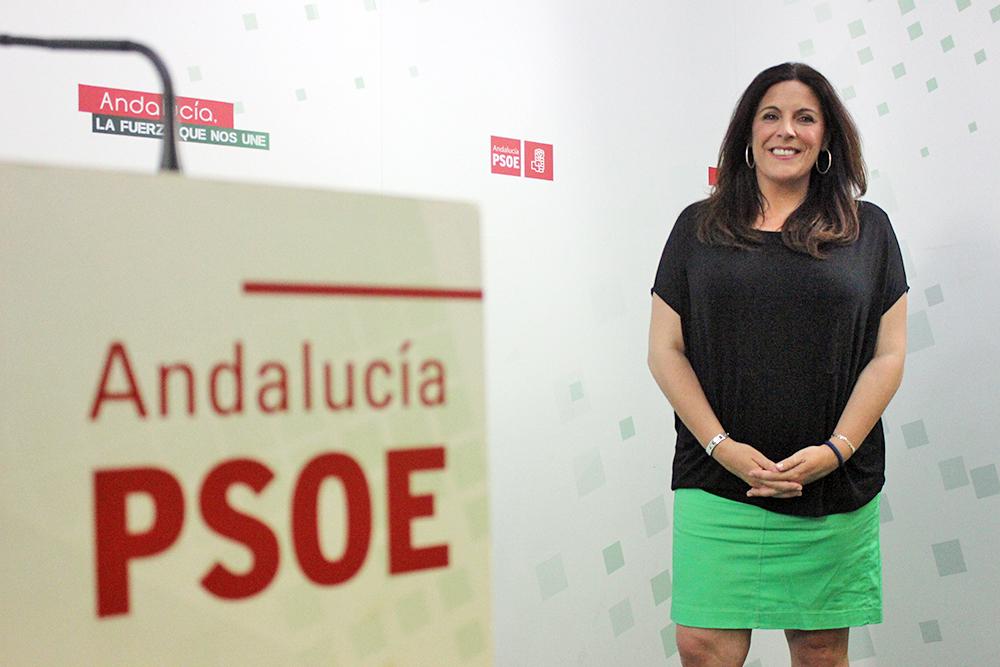 """El PSOE de Jaén exige a Moreno Bonilla que """"deje de esconderse e intervenga con urgencia en el escandaloso caso de transfuguismo"""" del Ayuntamiento de Jaén"""