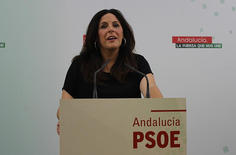 """Férriz: """"Igual que Rajoy consiguió apoyos para que Ana Pastor sea presidenta del Congreso, puede conseguirlos entre sus aliados para su investidura, pero el PSOE no es uno de ellos"""""""