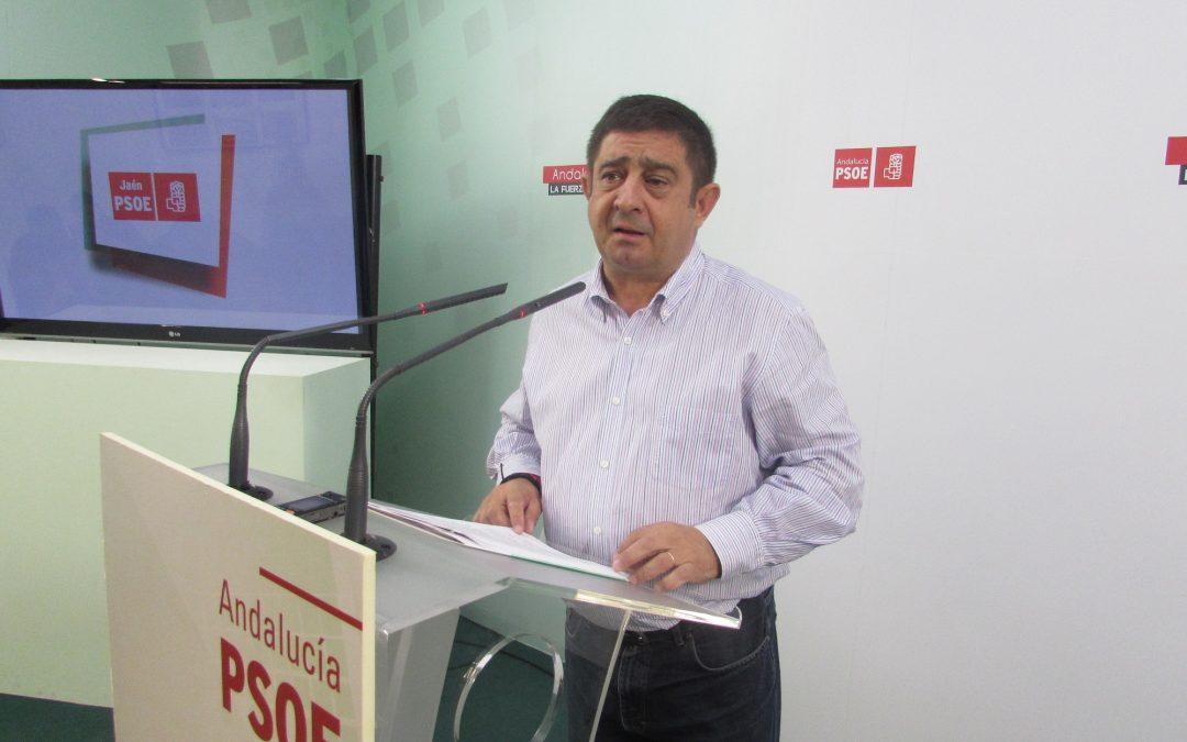 """El PSOE cuestiona la """"doble vara de medir"""" con políticos investigados: el """"injusto y desproporcionado"""" trato a De la Torre frente a la """"cómoda"""" declaración de Contreras"""