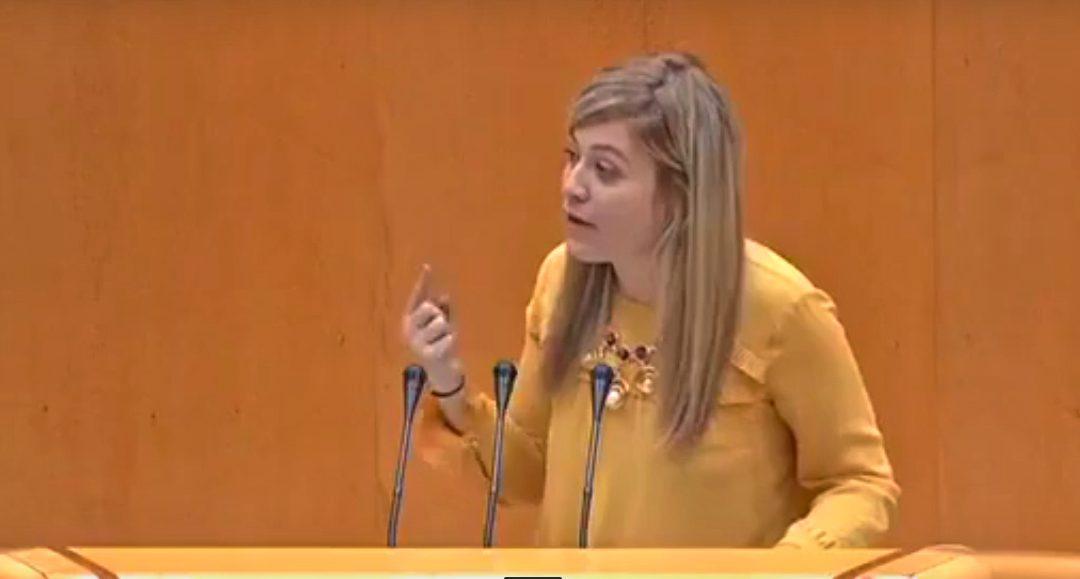 Berja critica que el Gobierno se niegue a restituir el presupuesto contra la violencia de género de la era Zapatero