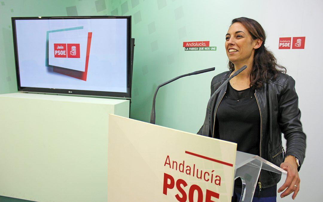 """Gámez destaca la propuesta de la Renta Mínima de Inserción como """"medida de justicia social"""" y confía en que pueda aprobarse"""