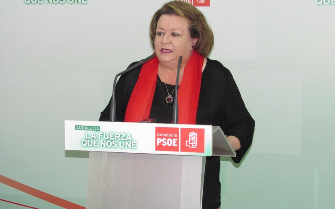 El PSOE presenta una moción para reforzar la lucha contra la violencia de género y «rechazar acuerdos con formaciones que plantean su supresión»
