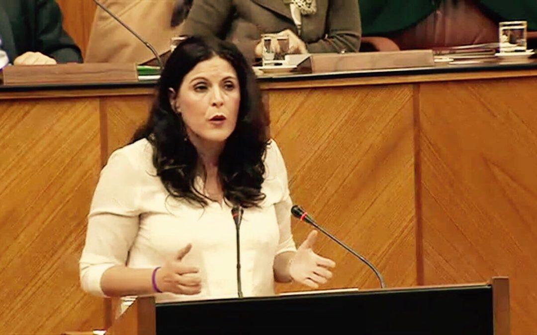 """Férriz: """"el único obstáculo para el tranvía es el Ayuntamiento de Jaén"""""""