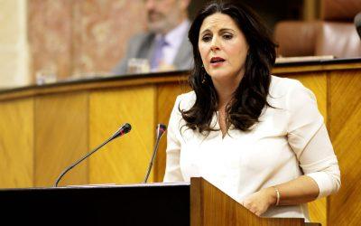 """Férriz acusa al PP de """"perjudicar a 19.000 trabajadores públicos"""" de la provincia con la suspensión cautelar de las 35 horas"""