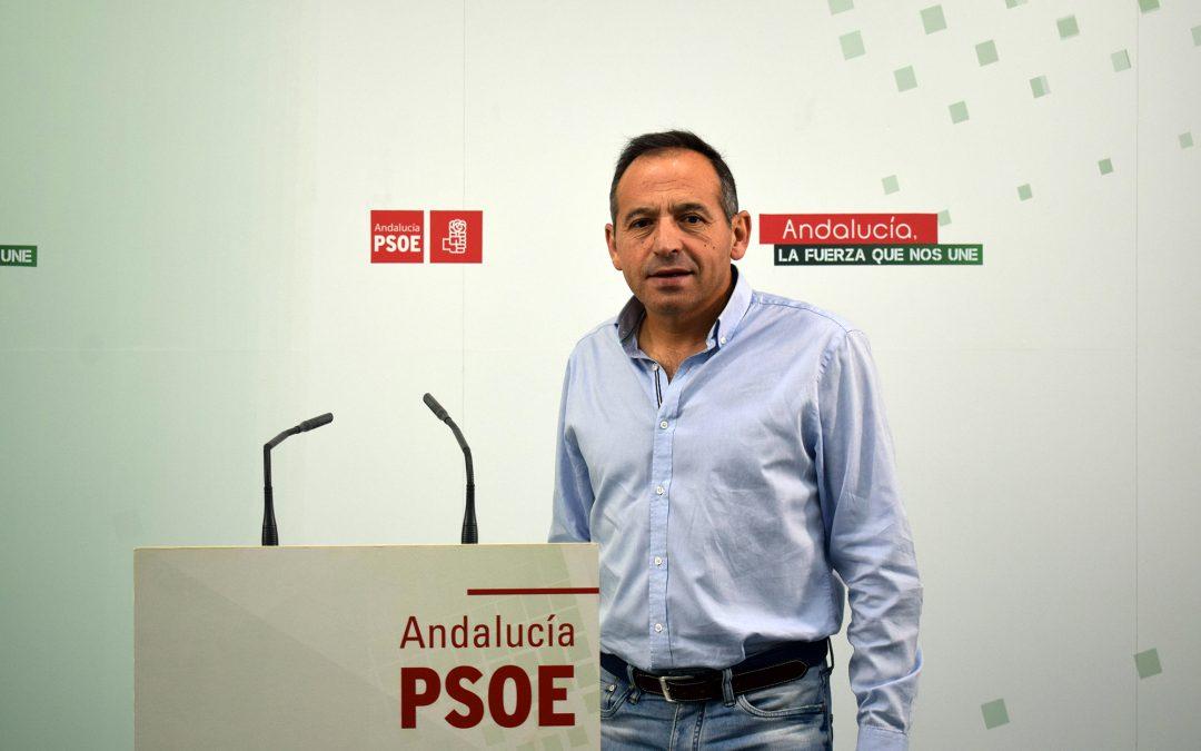 """El PSOE lamenta la """"desfachatez"""" de Requena, que tiene la corrupción """"saliéndole a chorros por las puertas y ventanas del PP"""""""