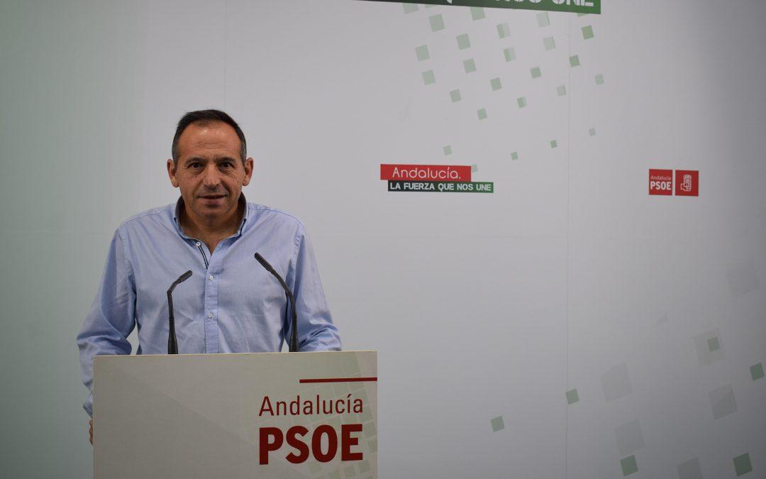 El PSOE de Jaén exige al PP disculpas por el linchamiento y la campaña de difamación contra Antonio de la Torre y la Diputación