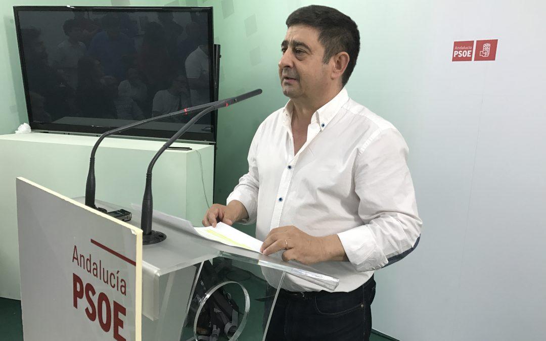 Reyes valora unas primarias «ejemplares» con alta participación de la militancia