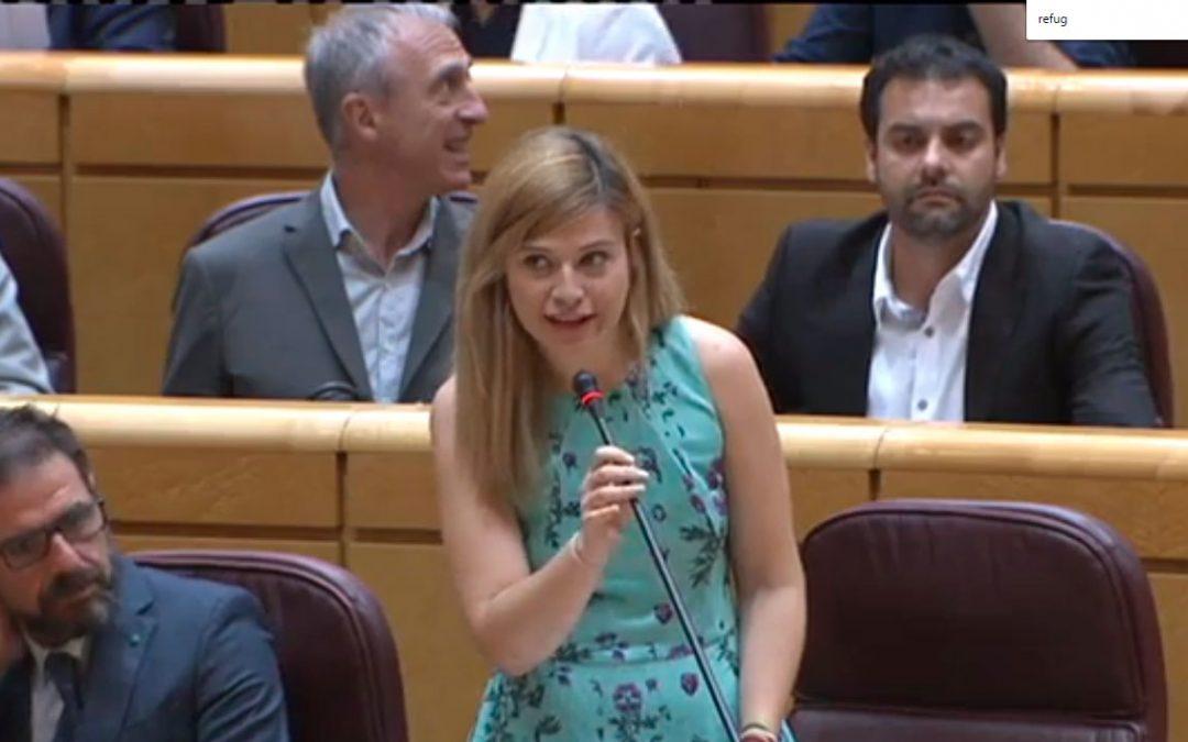 """El PSOE acusa al Gobierno de """"mirar hacia otro lado"""" frente a la explotación de refugiadas"""