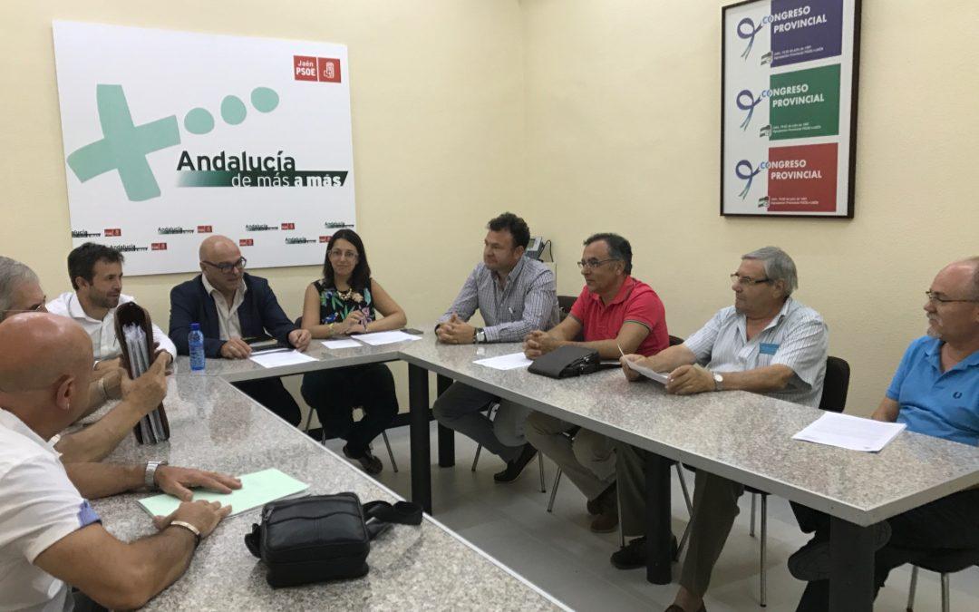 """El PSOE exige al alcalde de Jaén que reclame el mapa de riesgos de los Puentes ante la """"tomadura de pelo"""" del Gobierno"""