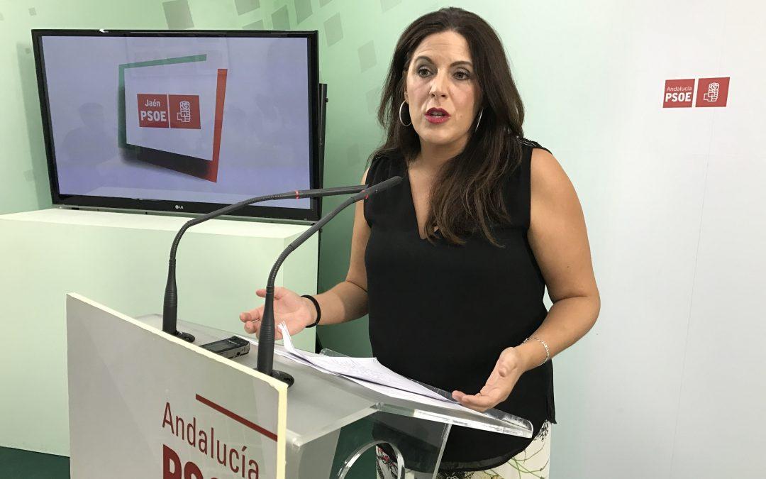 """El PSOE de Jaén muestra su respeto hacia los manifestantes, pero insiste: """"aquí no hay privatizaciones, ni copagos, ni despidos masivos, ni desmantelamientos"""""""