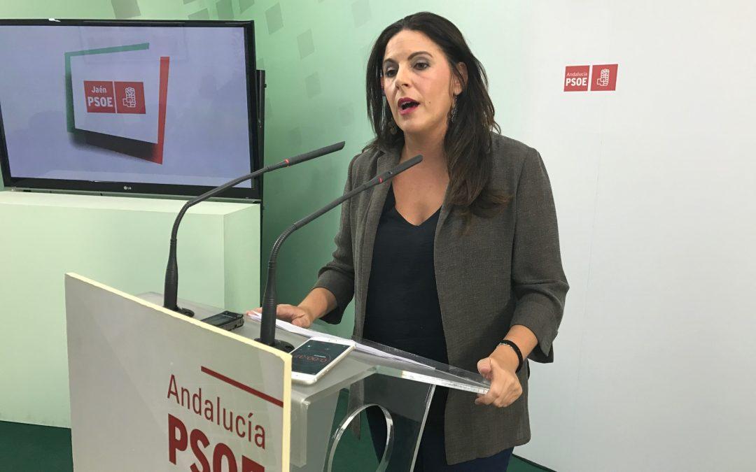 """El PSOE califica de """"gran noticia"""" la creación de dos áreas de gestión sanitaria y valora el trabajo continuo del Gobierno andaluz por mejorar la sanidad pública"""