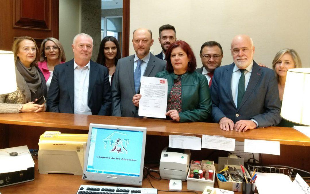 El PSOE pregunta al Gobierno por la exclusión de la línea eléctrica de Baza y presentará una PNL para exigir que rectifique y ejecute el proyecto