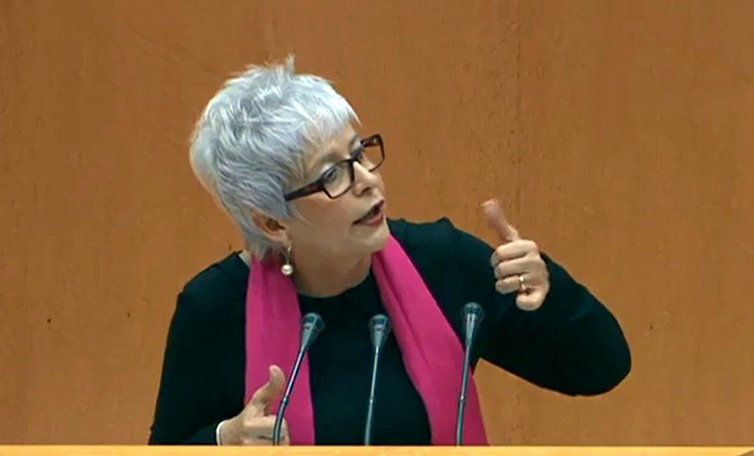 El PP rechaza en el Senado medidas de apoyo al sector oleícola