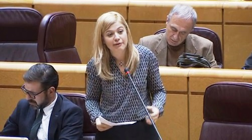 El Senado aprueba por unanimidad la moción del PSOE pidiendo medidas para reducir la desigualdad salarial y laboral