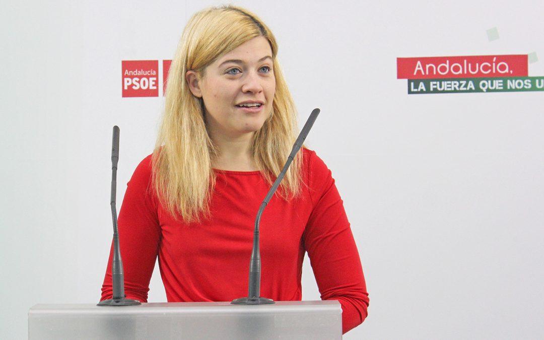 Berja reprocha al Gobierno su falta de medidas frente al 47% de paro juvenil en la provincia de Jaén