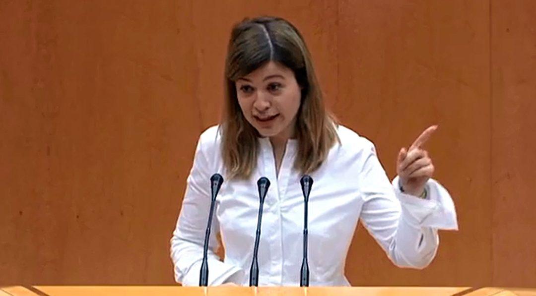 """Berja pregunta a Ciudadanos """"si respalda la actitud intolerante de sus socios de Vox en contra del colectivo LGTBI"""""""