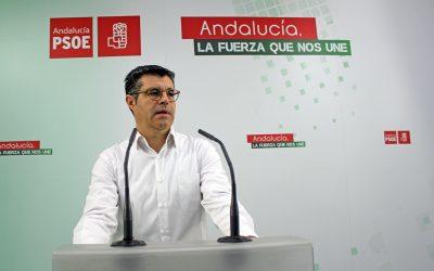 """Delgado le recuerda al PP que el Gobierno de Rajoy fue """"el enterrador"""" del ferrocarril en la provincia de Jaén"""