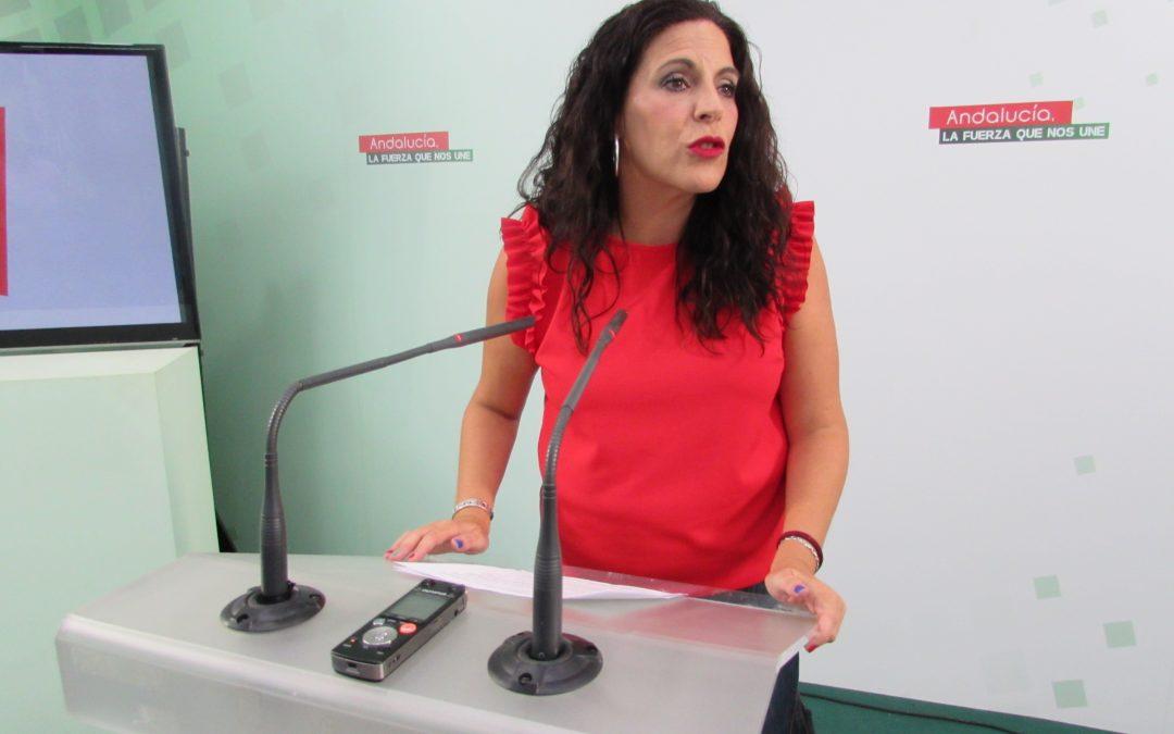 """Férriz califica de """"gran hito social"""" el blindaje de la subida de las pensiones mínimas andaluzas conforme al IPC"""
