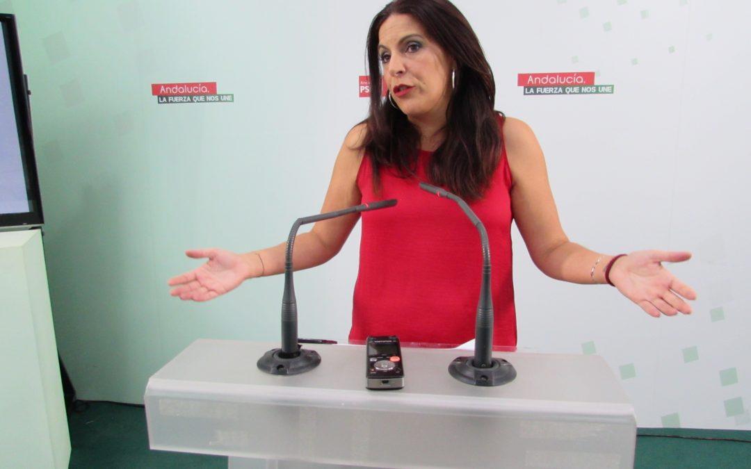 """Férriz reprocha el retraso en la licencia de obras del Neurotraumatológico: """"La presunta defensa del PP de la sanidad y de la educación es una máscara para hacer política de destrucción masiva"""""""