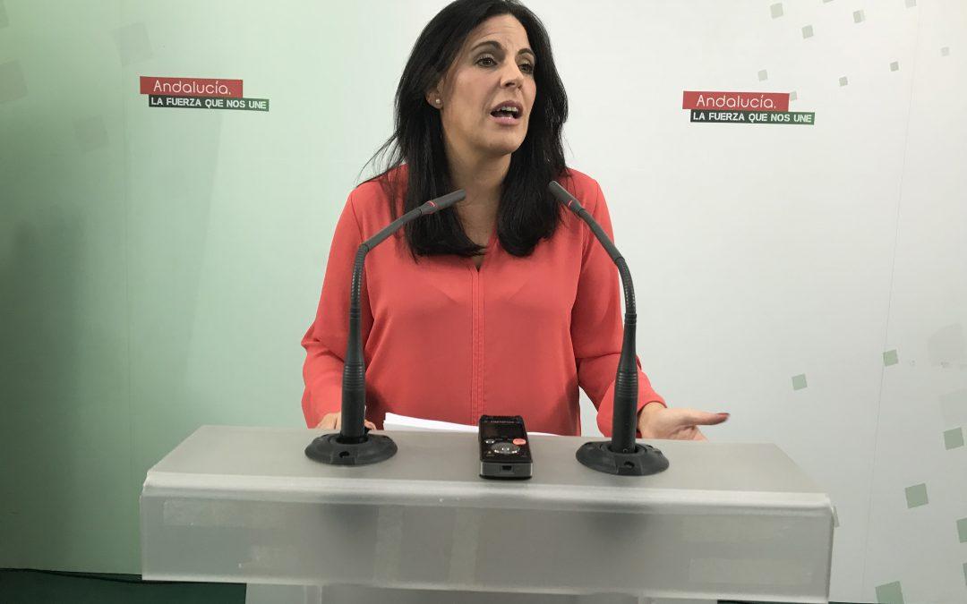 """Férriz valora que el PSOE concurre a las elecciones andaluzas """"con la mejor candidata"""" y exige al PP que deje los insultos o """"se vaya con la música a otra parte"""""""