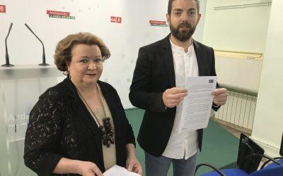 El PSOE pide un protocolo de prevención sanitaria para trabajadoras y trabajadores de la ayuda a domicilio