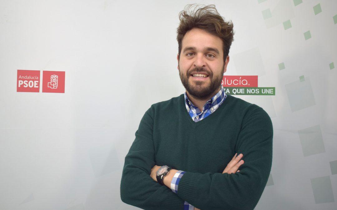 """Satisfacción del PSOE por el ambicioso apoyo al aceite: """"el Gobierno de España confirma que es el gran aliado del olivar"""""""