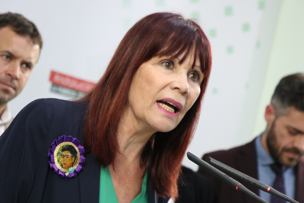 """Micaela Navarro: """"el ingreso mínimo viene a fortalecer nuestro estado social y a ayudar a miles de familias jiennenses"""""""