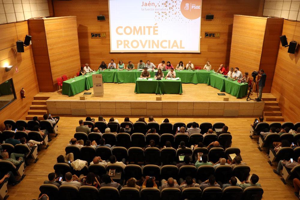 """Francisco Reyes continuará siendo presidente de la Diputación de Jaén junto a un grupo municipal socialista """"con una amplia experiencia municipalista"""""""