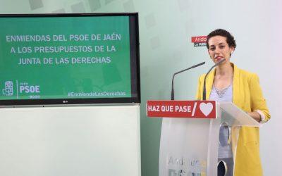 Batería de enmiendas para «amortiguar el daño» de los presupuestos de la Junta a la provincia de Jaén