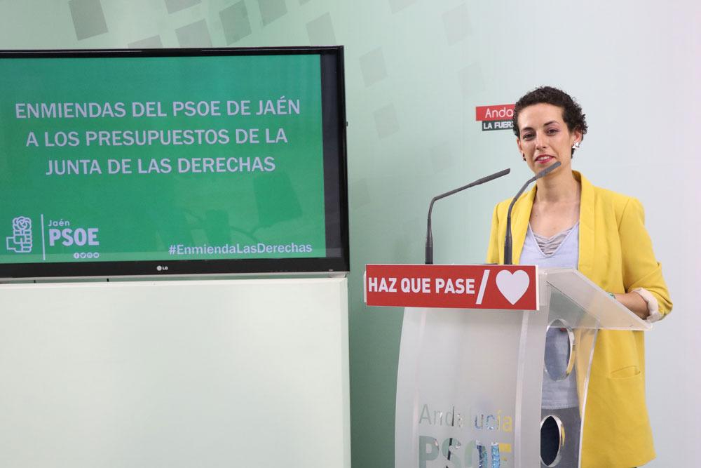 """Batería de enmiendas para """"amortiguar el daño"""" de los presupuestos de la Junta a la provincia de Jaén"""