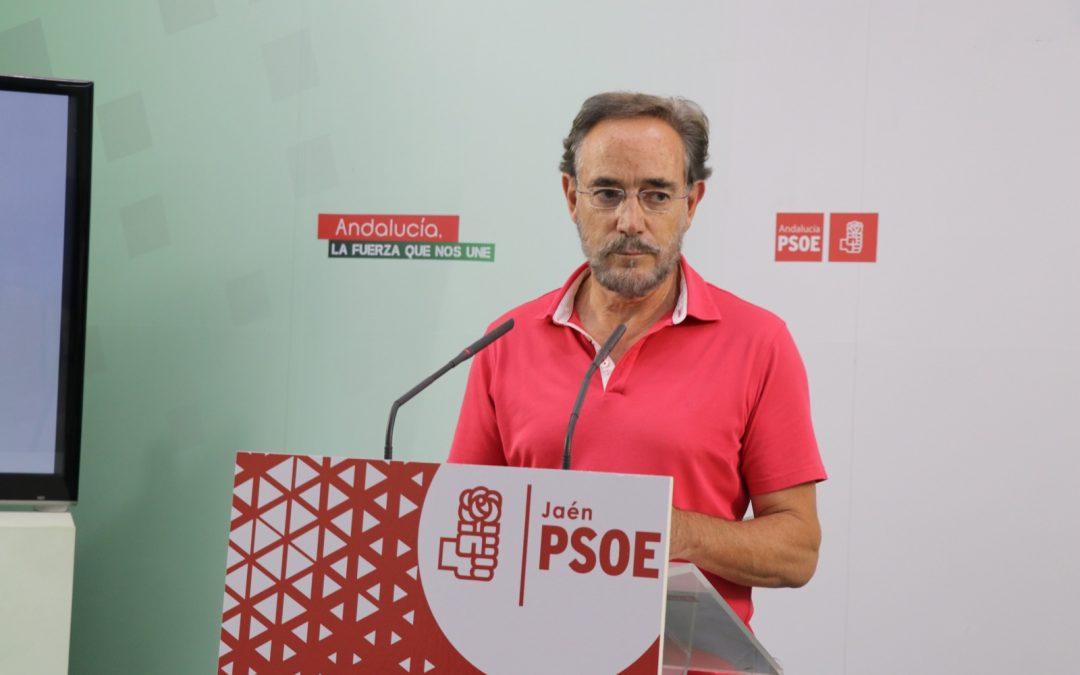 El PSOE lamenta que el alcalde de Linares y sus socios de Gobierno rechacen la moción con mejoras ferroviarias: «anteponen sus intereses partidistas y prefieren la confrontación»