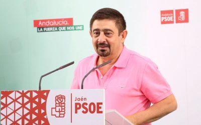 """Reyes: """"Es el colmo que el PP mire ahora hacia Madrid con el Museo Íbero; ellos tienen que sacar a licitación el proyecto museológico y museográfico»"""