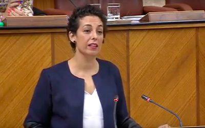"""Gámez reprocha a Moreno Bonilla en el Parlamento """"su dejadez y su pasividad"""" ante el cierre de comedores escolares en Jaén"""