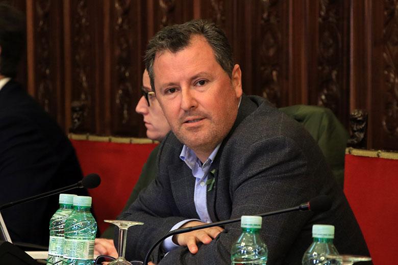 El PSOE aprueba la moción de apoyo al sector del olivar