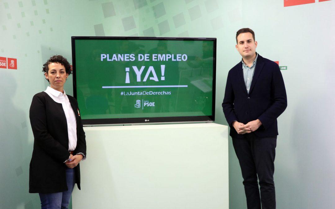 El PSOE exige a la Junta de derechas que convoque ya los Planes de Empleo
