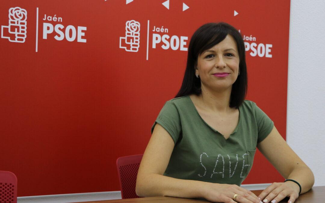 """El PSOE exige a la Junta que """"asuma su responsabilidad"""" y apruebe medidas para los 65.000 parados de la provincia"""