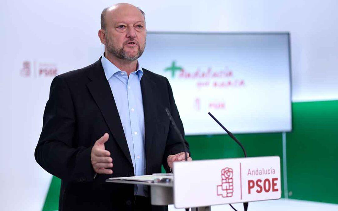 """El PSOE-A pide """"especial mimo"""" al olivar tradicional en la nueva PAC"""