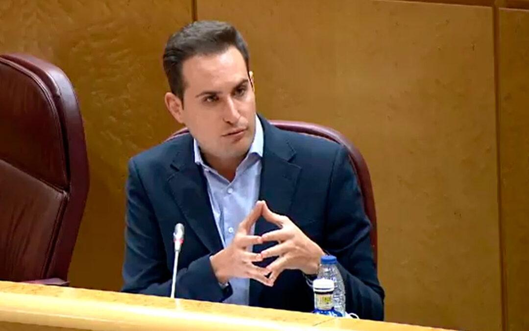El PSOE recalca que la Ley de Educación moderniza el sistema, protege a la educación pública y defiende una relación de normalidad con la concertada