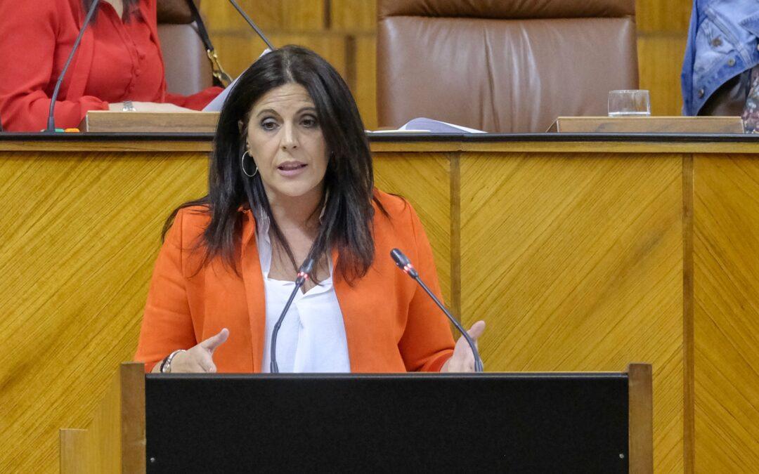 """El PSOE exige a la Junta que """"se alegre por la llegada de la vacuna, deje de confrontar con el Gobierno y refuerce el sistema sanitario público"""""""