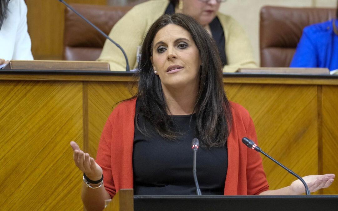 El PSOE registra una batería de preguntas al consejero de Salud por el desmantelamiento del Hospital de Andújar