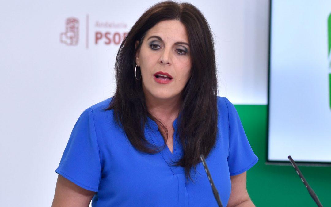 """El PSOE muestra su preocupación por la pandemia en la provincia de Jaén y exige a la Junta """"que deje de confrontar y refuerce de una vez la sanidad pública"""""""