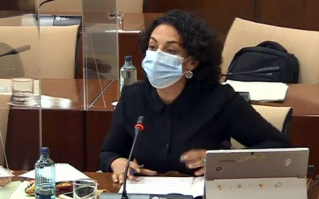 """Gámez exige a la Junta que """"deje las ocurrencias"""" y aplique """"rigor, seriedad y recursos"""" frente a la pandemia"""
