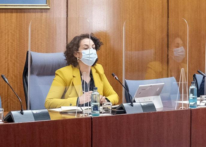 """El PSOE exige a la Junta que impulse un plan de apoyo al sector del olivar: """"el Gobierno de España cumple; la Junta no"""""""