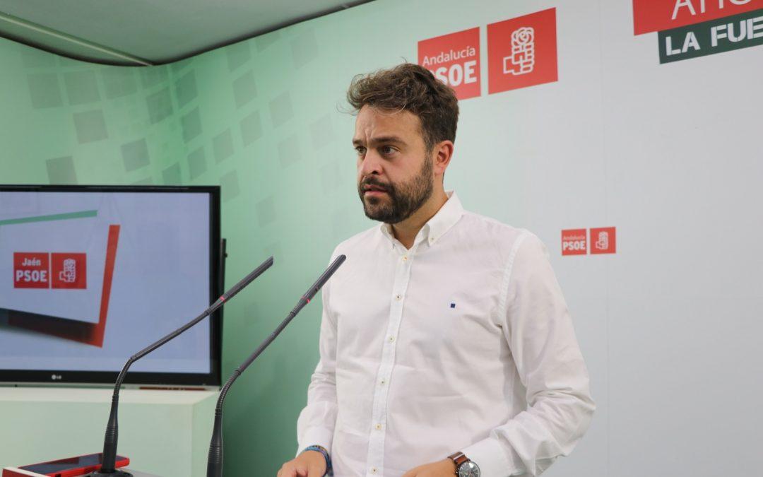"""Serrano: """"Se han sentado las bases de la mejor PAC para el olivar tradicional y el aceite de oliva"""""""